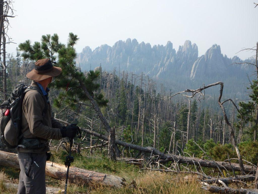 Harney Peak SD Spires Beyond Forest