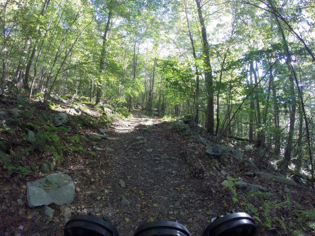 The Backbone Mountain summit trail