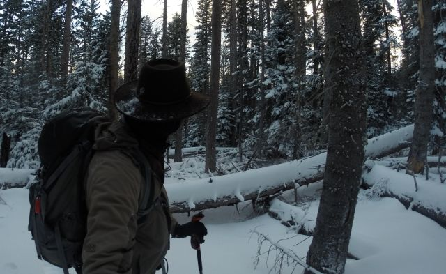 Climbing over and around the extensive tree-fall in snowshoes made navigating the woods a challenge.