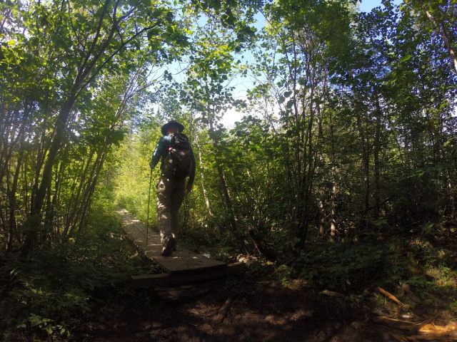There are a few boardwalks passing over boggy areas, but the trail was solid.