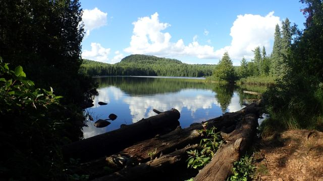 A view from the edge of Whale Lake.